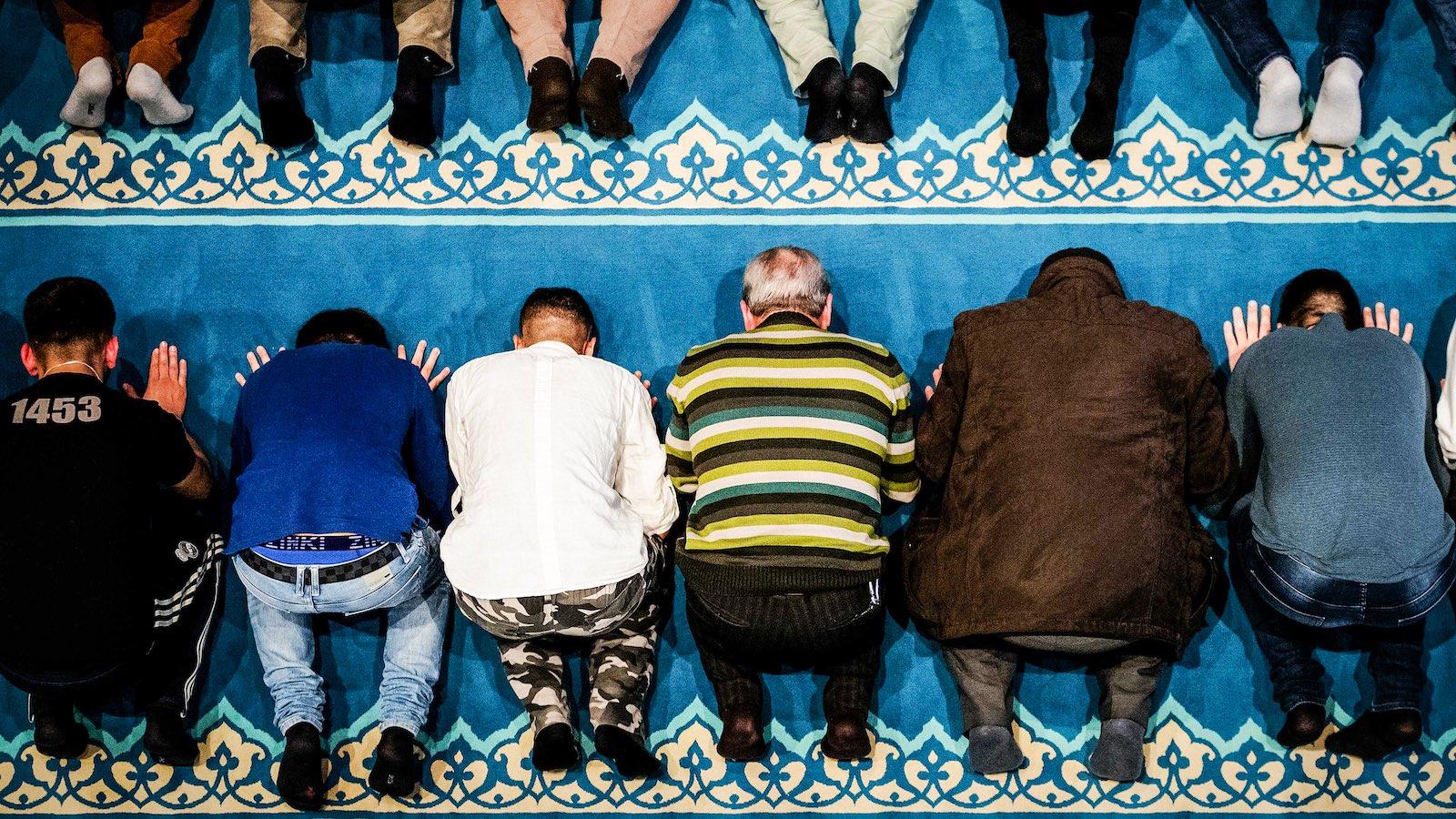 Bevándorlóország lettek – de megérte nekik? Mérlegen a holland migráció
